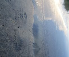 Footprint in Sand by pemeventskate