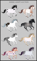 Horse Adopt Auction [OPEN] by Unlikely-Adopts