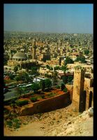 Aleppo V by WanderlustKing