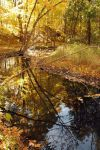 Reflected Autumn by dropsofjupiter88