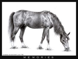 :: Memories :: by Shiaine