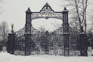 Feb 10 Public Gardens Gates by jay-oh-are-dee