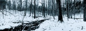 Icy creek Noblex in blue-black and white by harrietsfriend