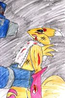 Renamon Storm: Time You Die by madmick2299