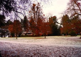 Vibrant Autumn Snow by sophhks