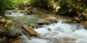 Stream at Franconia Notch State Park by dseomn