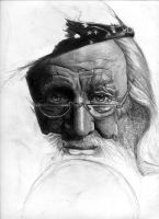Dumbledore WIP 2 by babymint34
