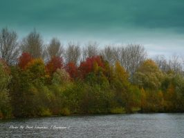 Autumn Colors. by Bermiro