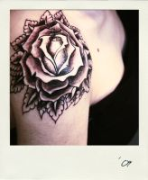 Rose tattoo IV by Mrs-Ivy