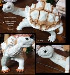 WIP Gourd Galapagos Tortoise by ART-fromthe-HEART