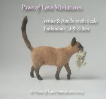 1:12 scale miniature cat by Mary Anderson by PawsofLoveMinis