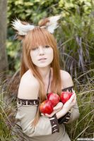 Horo Spice and Wolf 05 by thirdstop