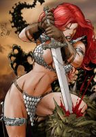 Red Sonja 03 by Seabra
