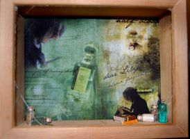 dark prince shadowbox by quidditchmom