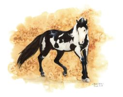 Max Paint Horse by saraquarelle