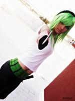 Roronoa Zoro Female Cosplay by LadyNoa