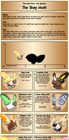 Shag Moth - Species Reference by LOLlyACE