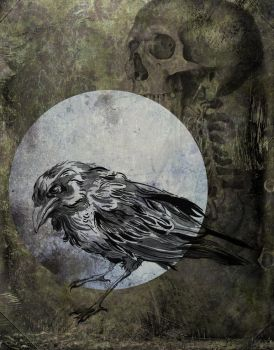Quoth the Raven by manfishinc