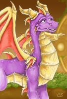Full Grown Spyro with bg by DragonCid