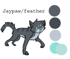 Jayfeather design ref by Lux-Kitty