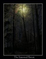 The haunted forest by Tricia-Danby