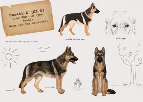 reference SZD 2013 by Saxargarm