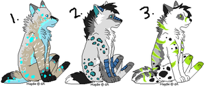 EXCLUSIVE wolf adopts by bluesunsetfox