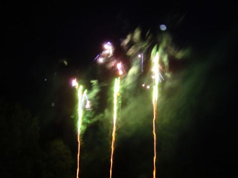 Feu d'artifice 2004 - 9 by Shikiryu