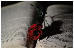 old book with Rose by NaViGa7or