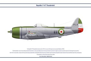 P-47 Iran 1 by WS-Clave