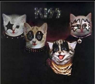 KISS cats by AdhyGriffin