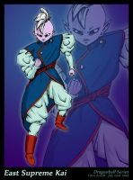 The Beloved Supreme Kai by SandFire1on1