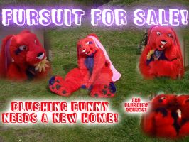 Selling Blushing Bunny Fursuit SOLD by SpizFeral