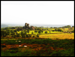 Dartmoor Tor by LadyElleth