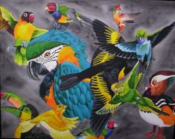 birds of color by Vertaki