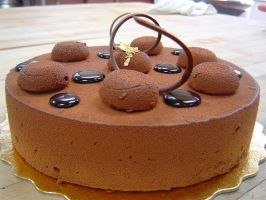 chocolate mousse cake by pathofpetals