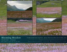 Blooming Meadow Stock Pack by kuschelirmel-stock