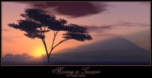 Morning in Tanzania by Sorina