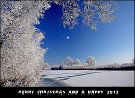 Merry Chrismas and a Happy Newyear by Betuwefotograaf