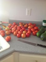 Attack Of the Killer Tomatos by kirafaclaws22