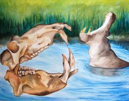 Hippopotomuses by Byohazard