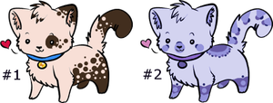 Kitten Adopts :CLOSED: by SALBP