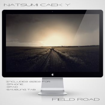 Field Road by Natsum-i