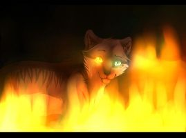 This Girl is on fire by Renkat