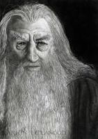 Gandalf the grey by Larien1121