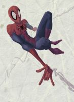 Spidey 1 by PiratoLoco