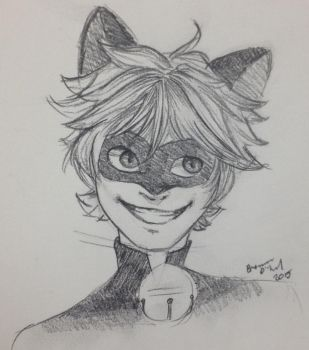 Chat Noir by TheDreamer843