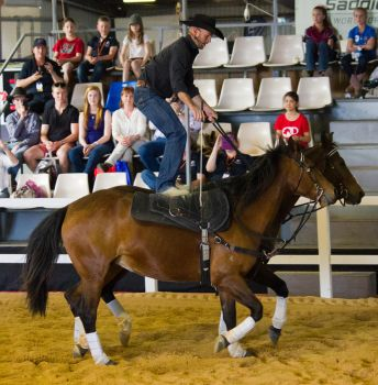 STOCK - 2014 Total Equine Expo-123 by fillyrox