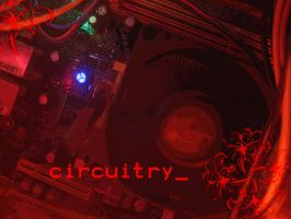 Circuitry by EXP282