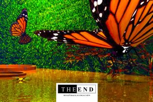 Monarch Butterfly by centauros-graphic